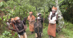 The Batwa come to welcome us into the forest